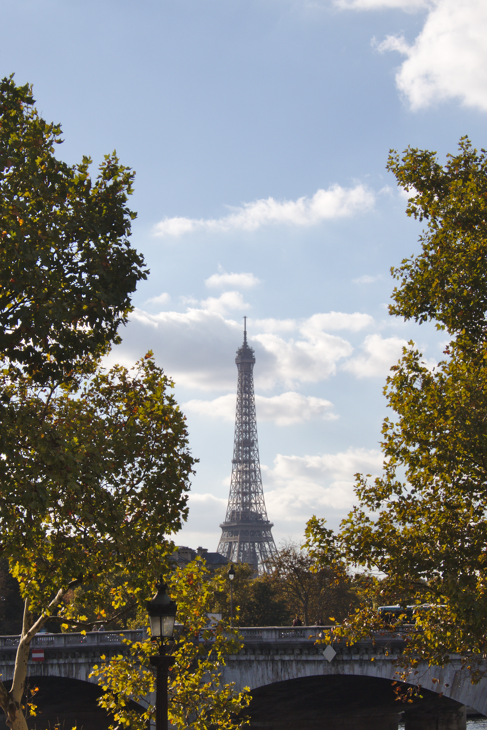 Photo of the Eiffel Tower seen through trees