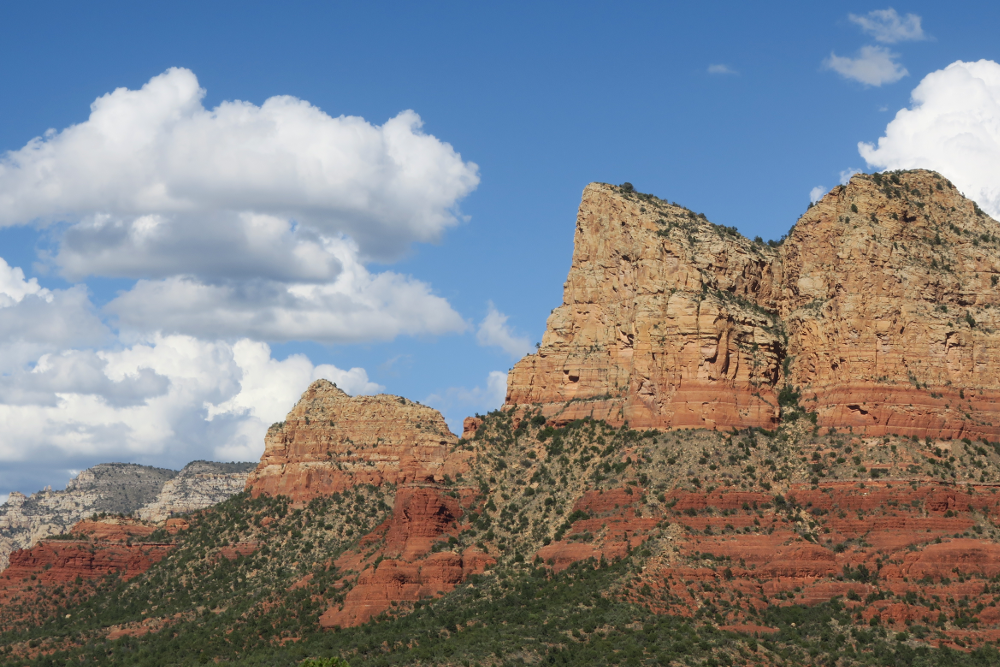 Image of red rock mountain and pine trees.